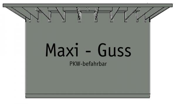 Teleskop-Domschacht Maxi - Guss - PKW befahrbar